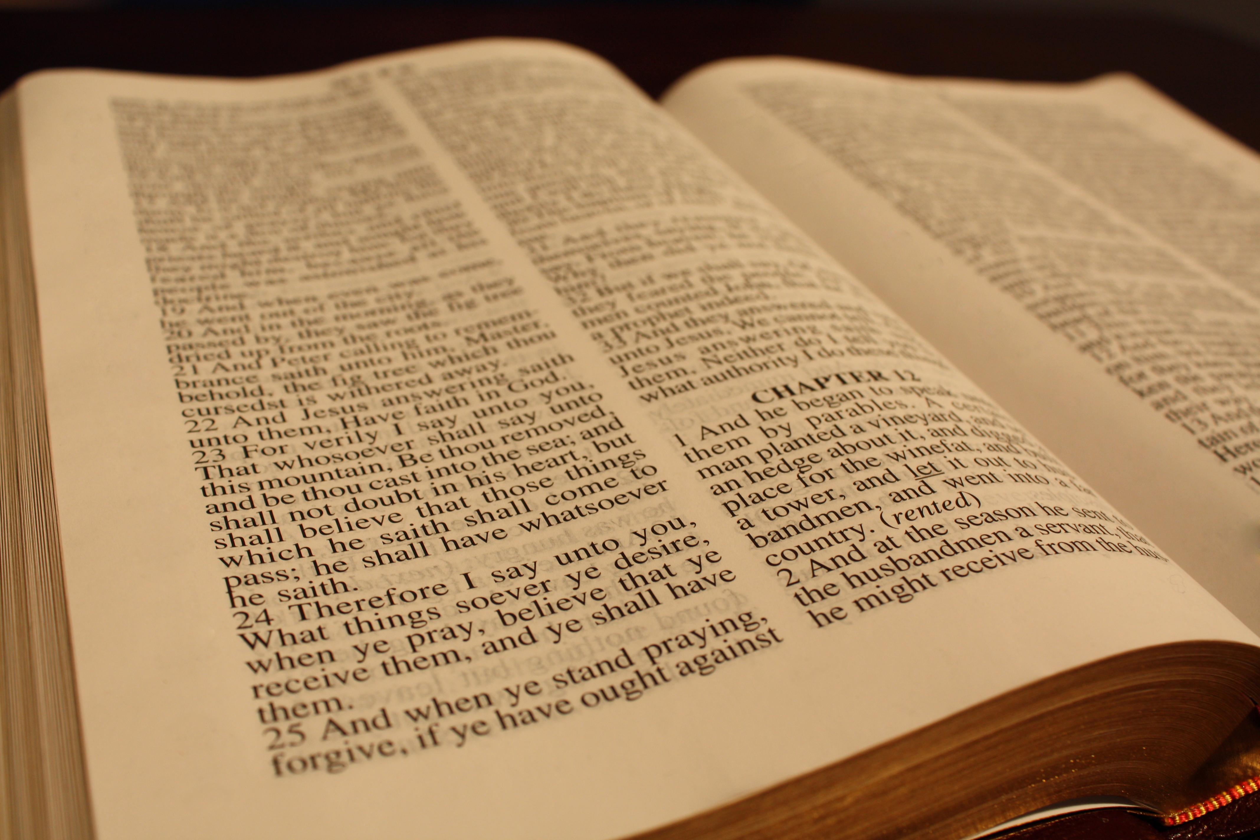 bible-copy